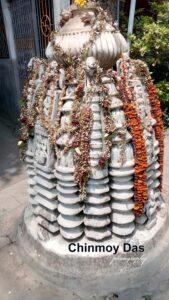 জীর্ণ মন্দিরের জার্নাল-৮১ ।। চিন্ময় দাশ 8