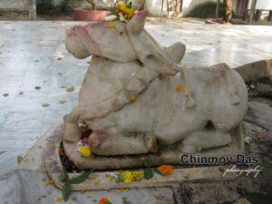 জীর্ণ মন্দিরের জার্নাল-৮৩।। চিন্ময় দাশ 9