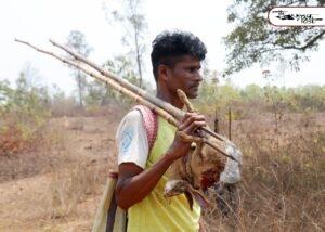 মেদিনীপুর বনাঞ্চলে শিকার উৎসব! নির্বিচার পশু পাখি নিধন, হত্যালীলা নিবৃত্ত করতে ব্যর্থ বনদপ্তর 5