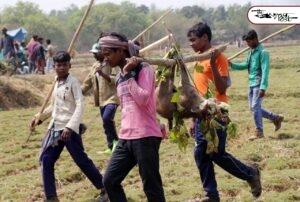 মেদিনীপুর বনাঞ্চলে শিকার উৎসব! নির্বিচার পশু পাখি নিধন, হত্যালীলা নিবৃত্ত করতে ব্যর্থ বনদপ্তর 2